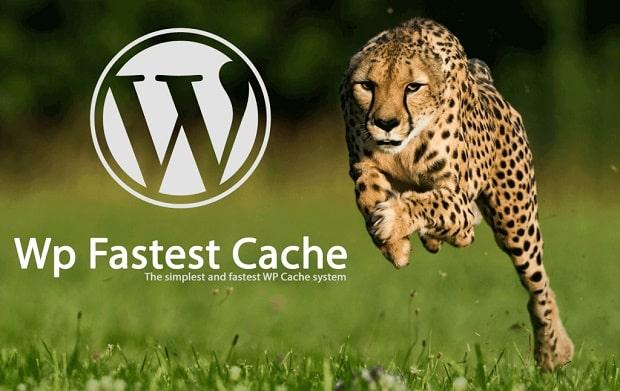 WP Fastest Cache - Ninetheme
